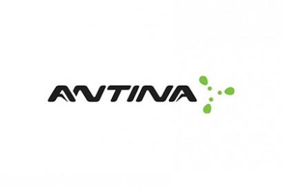 antina